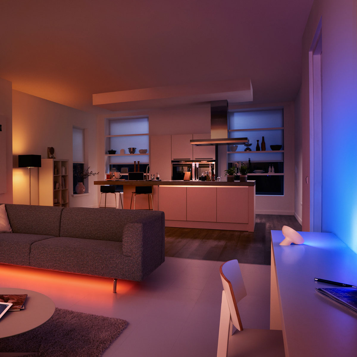 philips hue bloom white starterset 2 lampen met bridge. Black Bedroom Furniture Sets. Home Design Ideas